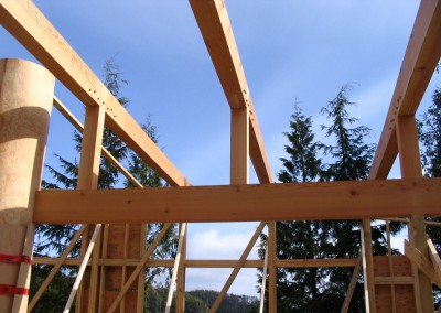 Ayre Residence_Framing Detail 2